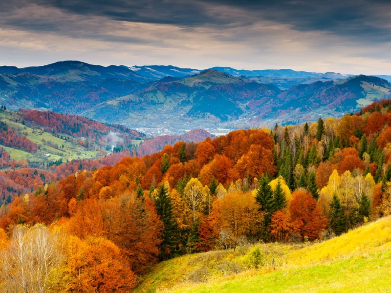 Gallery Autumn Pictures Across The World Trente