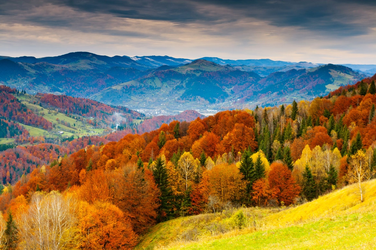 Ashville North Carolina Mountain Autumn Fall Trente