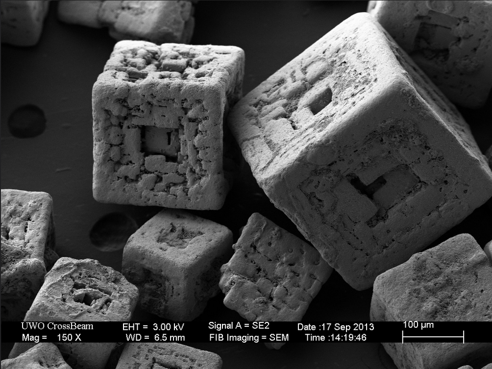 Gallery electron microscope photos salt grain