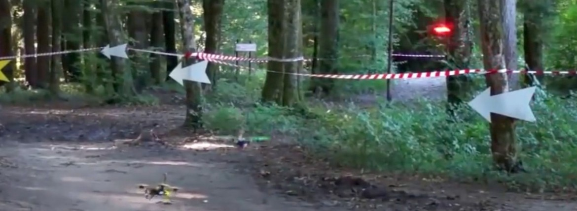 drone fpv race forest camera trees circuit